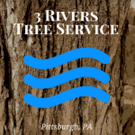 3 Rivers Tree Service Logo